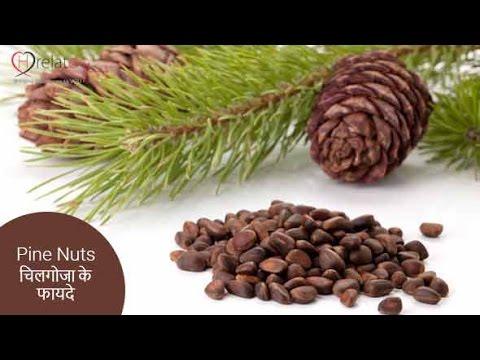 Chilgoza Benefits - सेहत से भरपूर पाइन नट्स