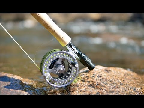 Beginner's Guide to Fly Fishing (How to Fly fish)