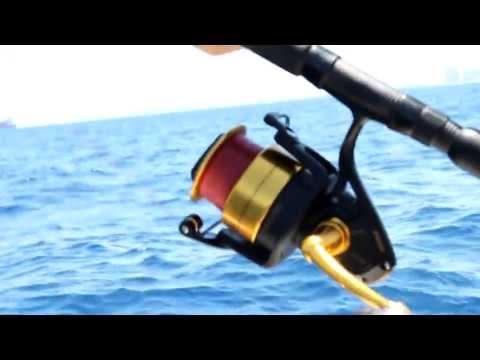 Live Bait Fishing For 30lb. Blackfin Tuna