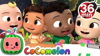 Download The Hello Song + More Nursery Rhymes & Kids Songs - CoCoMelonThe Hello Song