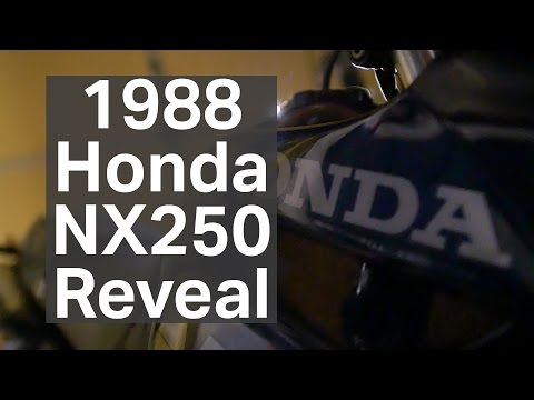 Honda NX250 Reveal Video - Carburetor Cleaning and Tune Up [Buy-Build-Ride]