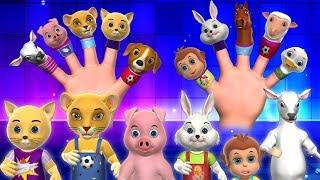 Finger Family Song - 3D Animals Finger Family Nursery Rhymes & Songs for Kids