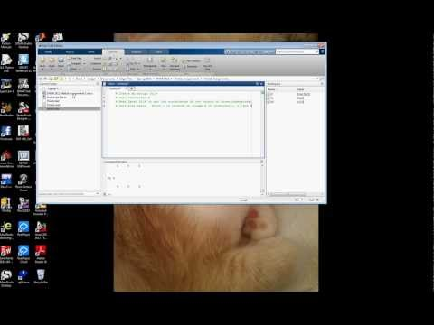 Matlab First Script File