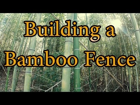 Building a Bamboo Fence