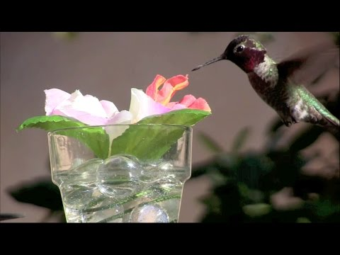 DIY Silk-Flower Hummingbird Feeder