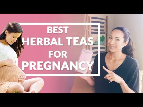 These are the best and healthiest HERBAL PREGNANCY TEAS  | KOALABUBS AUSTRALIA