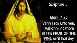 The Two Types Of Wine In The Bible #4