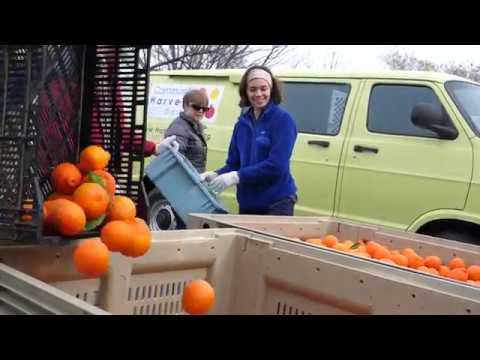 #UCDavisLife: Community Harvest