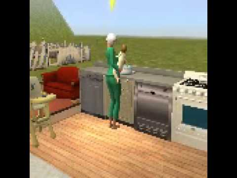 Sims 2 funny moment birthday and funeral