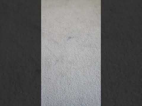 Stain remover from carpets - bicarbonate soda, white vinegar and an iron