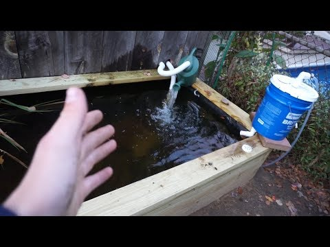 Homemade Pond Update #2 ~ CHEAP DIY FILTER (under $20)