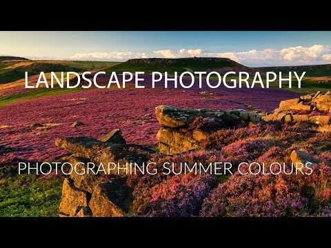 Landscape Photography Tips for Photographing Summer Colours