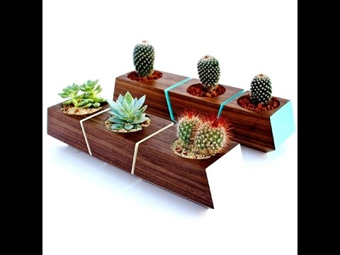 A Modern Wooden Flower Pot for Refresh Your Space Home