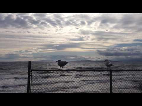 Ocean in vancouver island