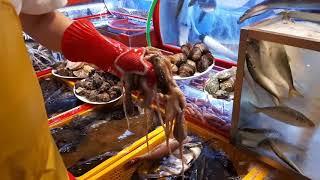 Download jagalchi, mercado de peixe - busan, coreia do sul Video