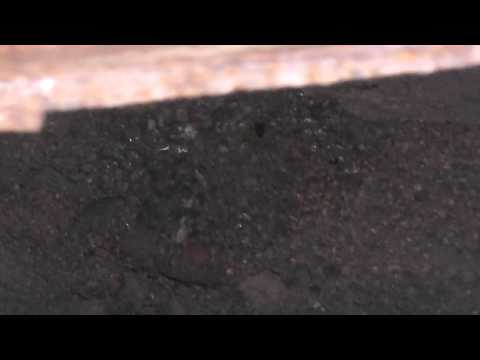 Department of Land Transfer Information Inc Original Mina Mine in Mineral County Nevada Video 2 of 3