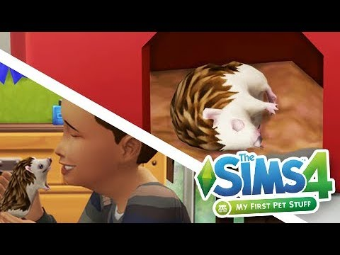 IT BIT HIM!! // MY FIRST PET STUFF 🐹 // GAMEPLAY OVERVIEW // THE SIMS 4