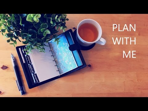 LV PM Agenda Setup for Wallet, Daily Log, Travel Set|Plan with Me|Nadia L