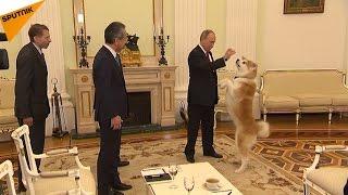 プーチン大統領、愛犬「ゆめ」を記者団にお披露目