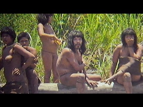 Xxx Mp4 قبیله ناشناخته ای در پرو کشف شد 3gp Sex