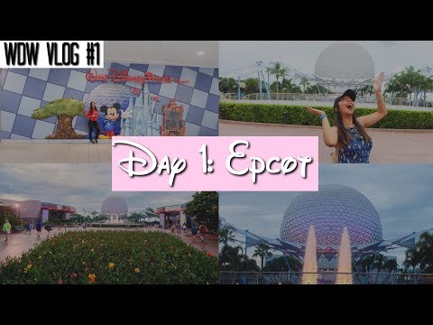Walt Disney World Vlog: Day 1 - Arrival   June 2017