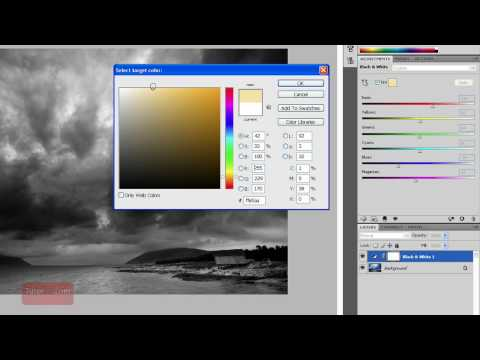 Photoshop Tutorial: Creating a Black And White Image [In-Depth] Beginner