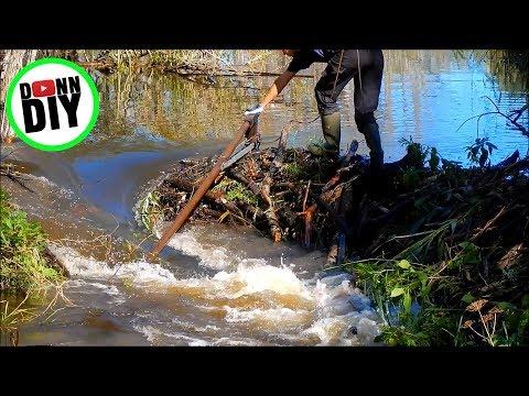 Opening Beaver Dam