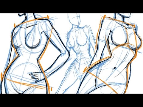 How To Draw The Female Body