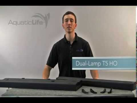 Aquatic Life T5 HO Dual Lamp Light Fixture Overview | Big Al's