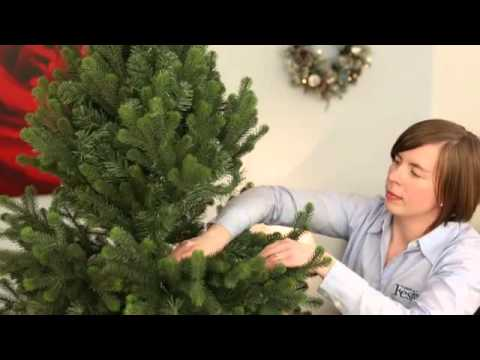 Assembling and shaping hinged Christmas Tree