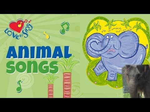 Elephant Song with Lyrics   Kids Animal Songs   Children Love to Sing