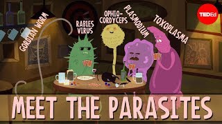 How parasites change their host