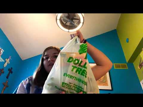 Building a small fish tank only using dollar tree items