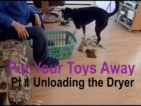 Put Your Toys Away Part 1 of Unloading the Dryer (Skill for Service Dogs)