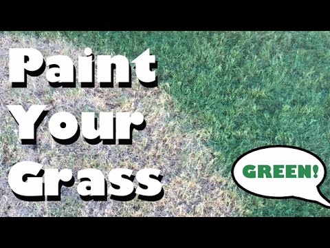 Paint Your Grass Green - How To