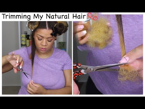 How To Trim Natural Hair   Get Rid of Split Ends/Damaged Hair