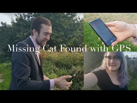 Missing Cat (collar) Found with GPS