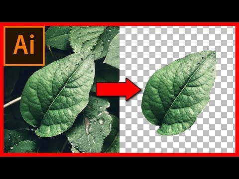 How to cut out an image / object in Illustrator CC 2018