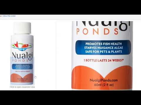 Review about Nualgi Ponds Fish Health and Controls Algae