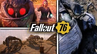 Fallout 76 LUCK Build & Perk Cards Overview - SPECIAL St
