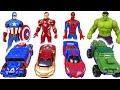 Paw Patrol Let39s Play Marvel Tomica And Metakore Hulk Spider Man Transform DuDuPopTOY