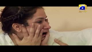 Saaya - Episode 22 Best Scenes   Har Pal Geo