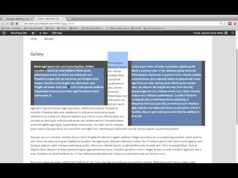 HTML Editor part 03 - WordPress Tutorial Video 16 of 62