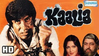 Kaalia (HD) - Amitabh Bachchan | Parveen Babi | Pran - Superhit Hindi Movie (With Eng Subtitles)