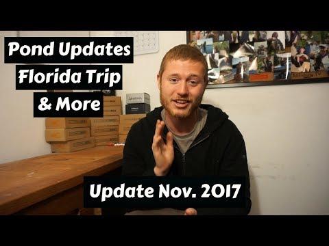 Homemade Pond Updates, Florida Trip, & More ~ Update Nov. 2017