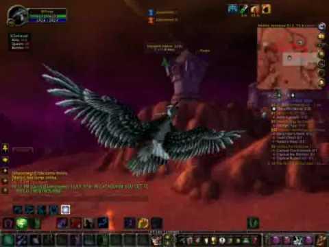 Druid Flight form gameplay