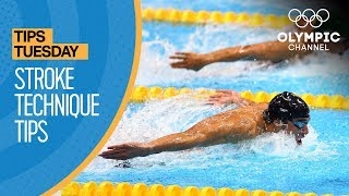 How To Improve Your Swimming Stroke Technique Ft. Coach Jack Bauerle | Olympians
