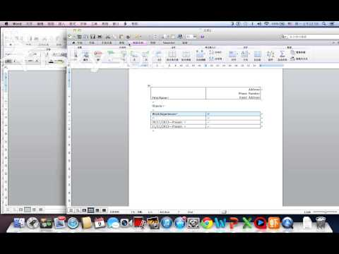 how to write a easy resume in Word Mac Version