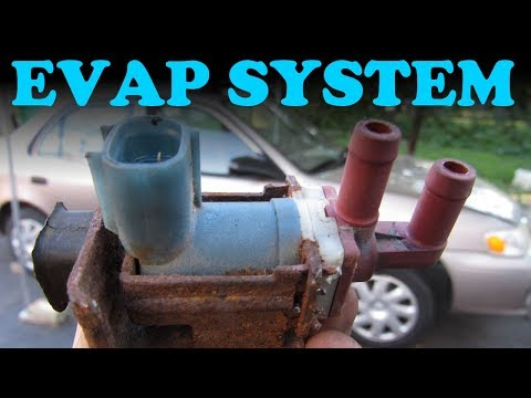 How the EVAP System Works