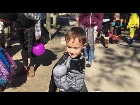 Boo at the Zoo 2017